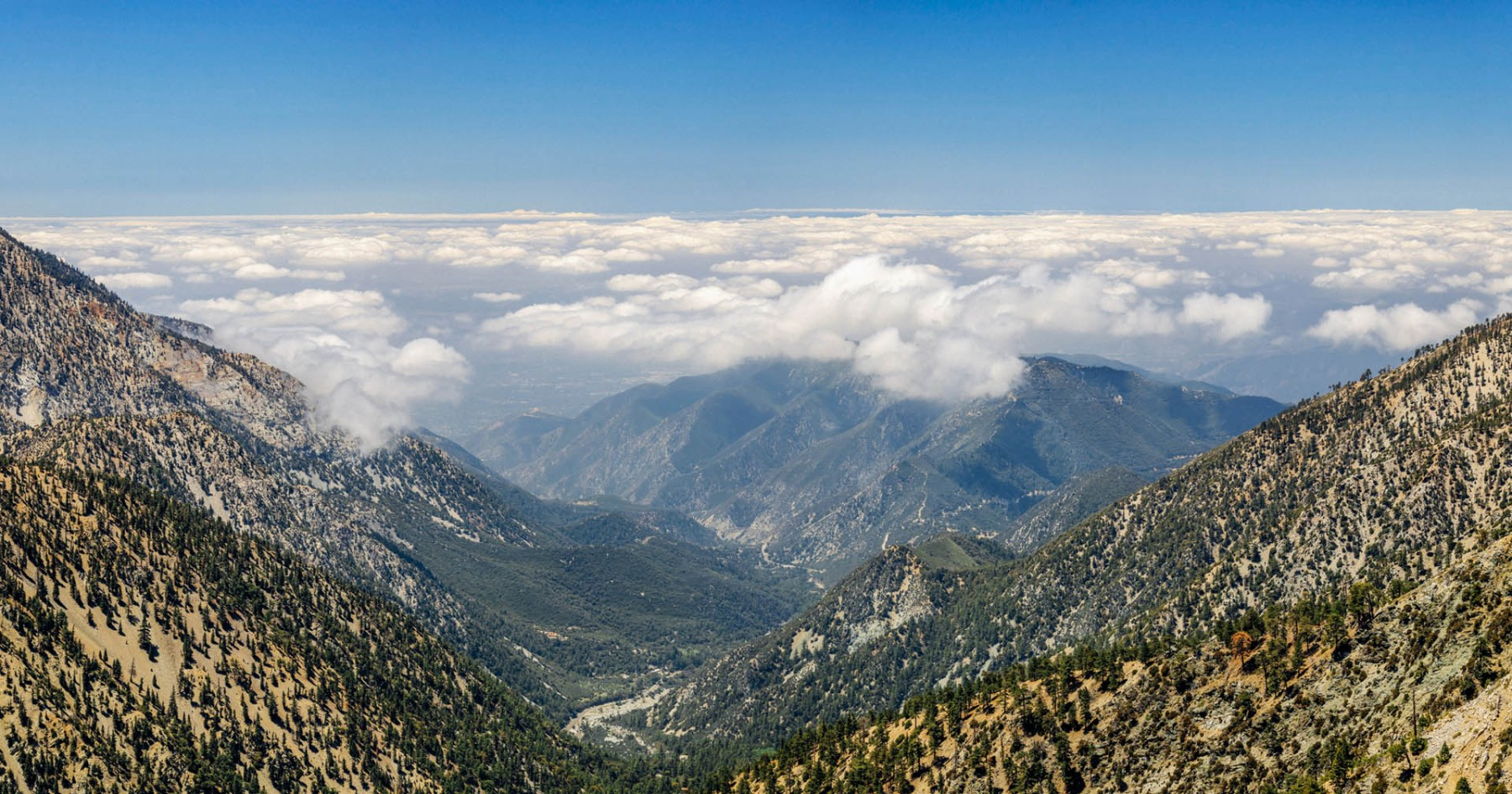 We Hereby Declare These the 52 Best Hikes in California