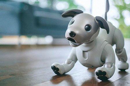 Sony's AI Dog Won't Pee on Your Floor, Hopefully