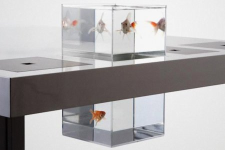 This Aquarium Comes With Its Own Desk