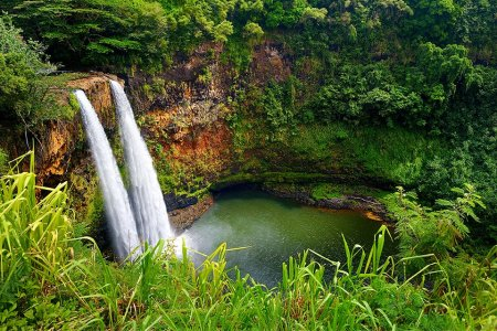 Here's How to Experience the Wild Side of Hawaii