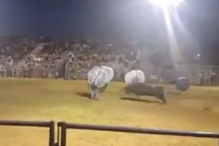 "So Uh, Playing ""Knockerball"" With Angry Bulls Is Now a Thing"