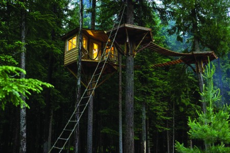 The Ultimate Treehouse and Cabin Guide