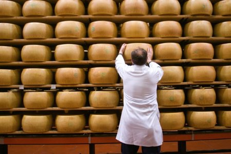 Of Course Italy Has a Bank That Accepts Cheese as Loan Collateral
