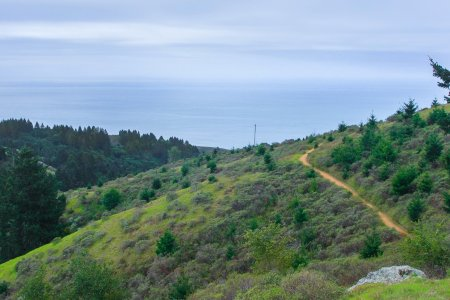 Here's How to Turn the Dipsea Into the Toughest Trail Run in SF