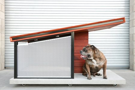 If You're Gonna Sleep in the Doghouse, Make It This One