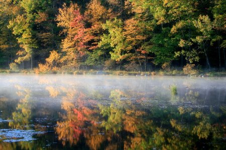 The Seven Best Fall Hiking Destinations Near New York