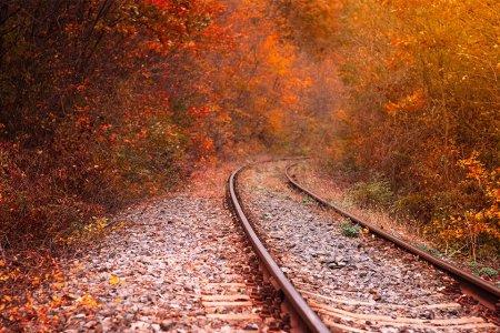 This Train Hasn't Run Since the 1960s