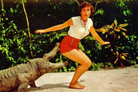 Before Florida Got Weird, It Was the Pinup Postcard Capital of the World