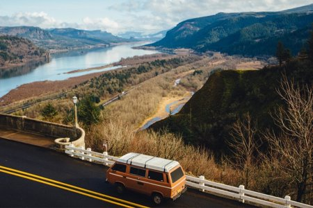 Your Summer Road Trip Field Guide