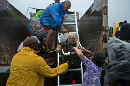 A Quick, Simple Guide to Donating Effectively to Hurricane Harvey Relief