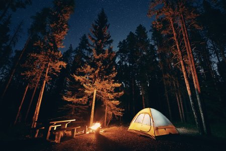 Everything You Need to Build a Campsite on a Budget