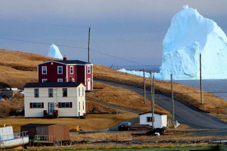 Could You Win a Staring Contest with a Gigantic Iceberg?