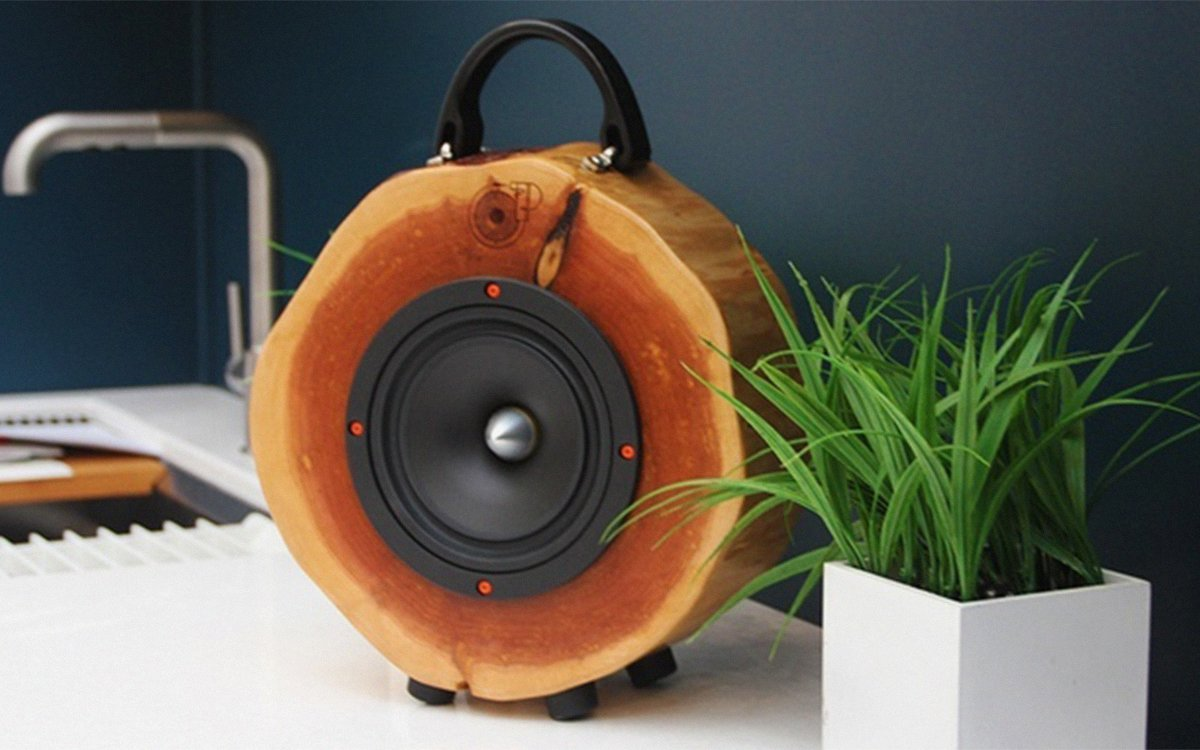 From Our No-Brainer Dept.: Handcrafted Log Speakers for Charity
