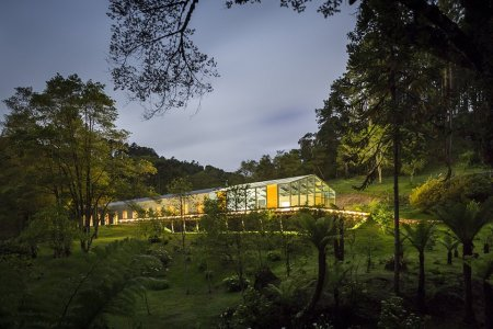 Brazilian Jungle Home Makes a Strong Case for Glass Houses