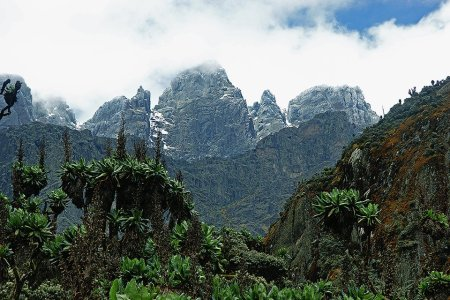 Did a Real-Life Indiana Jones Just Find the Long-Lost Mountains of Kong?