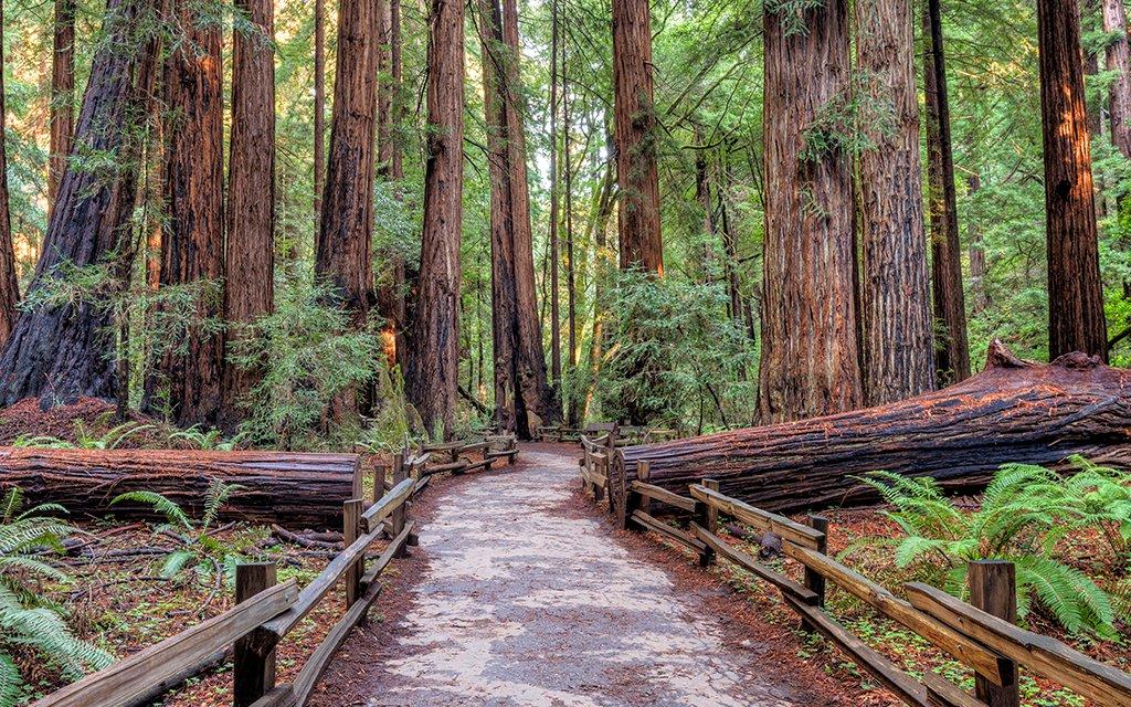 National Park Free Weekend Insidehook