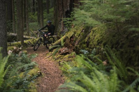 Oregon's New Timber Trail Is a 670-Mile Bike Path Through Paradise