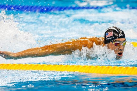 Bored With Feeble Humans, Michael Phelps Has Agreed to Race an Actual Shark