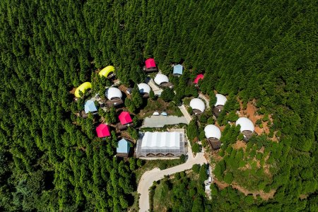Technicolor Glamping Playground, Right This Way