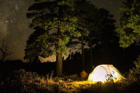 Who's Up for a Five-Star Overnight Bigfoot Hunt?