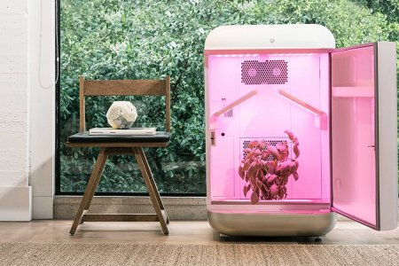 Seedo Is a Set-It-and-Forget-It Greenhouse for Hydroponics Growers