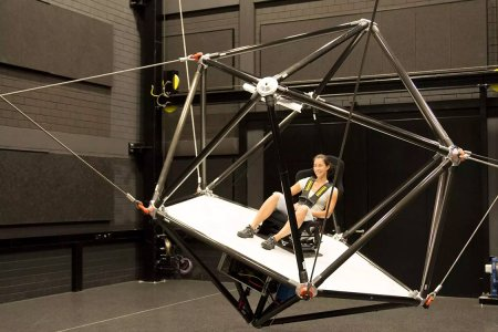 If You Only Go on One Giant Virtual Reality Flight Simulator This Year …