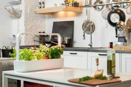 This Countertop Garden Grows Superfoods Better Than Your Supermarket