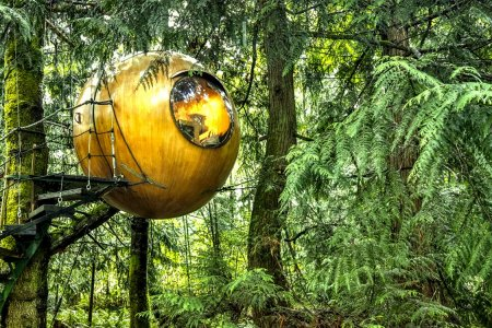 This Spherical Treehouse Is the Bubble You Should Be Living In