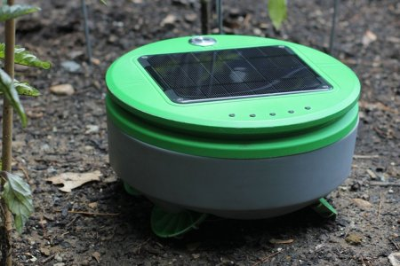The Roomba Guy Just Made a Robot That'll Weed Your Yard