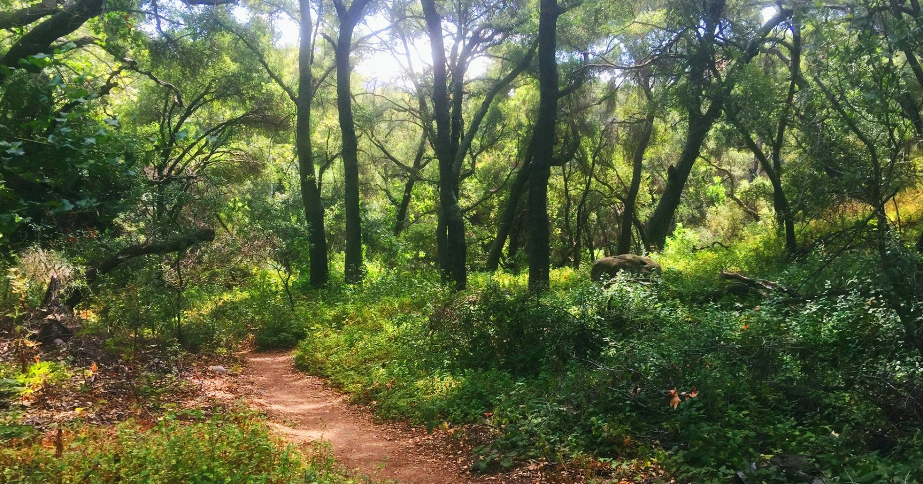 The morning hike and brunch to do this weekend