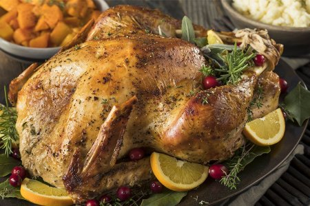 Here's How We Stumped the Butterball Turkey Talk-Line