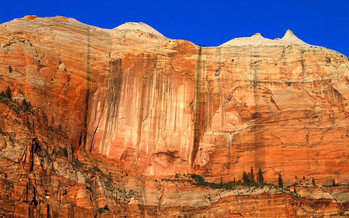 Zion National Park Might Be Locking Out Visitors Soon