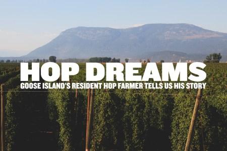 Hop Dreams