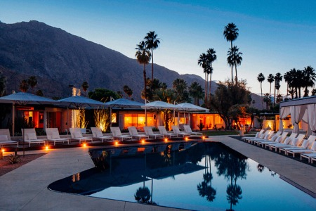 The Palm Springs Reader