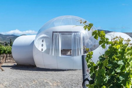 You Should Book This Bubble Suite on a Mexican Vineyard Right Now