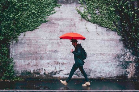 The Last Umbrella You'll Ever Buy, Now Under $50