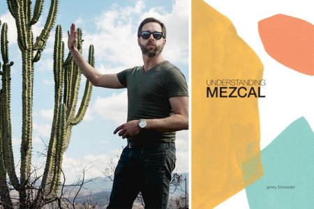 A Crash Course in Mezcal From Chicago's Resident Agave Whisperer