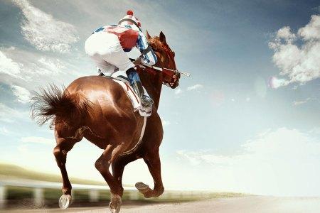 Wanna Go Halfsies on a Racehorse?