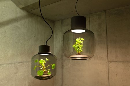 No Window? No Problem. This Lamp Can Grow Plants Anywhere.