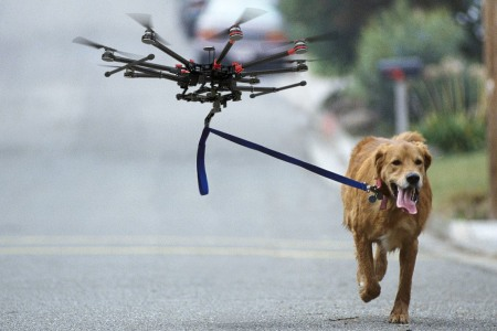 Let a Drone Walk Your Dog with Barq