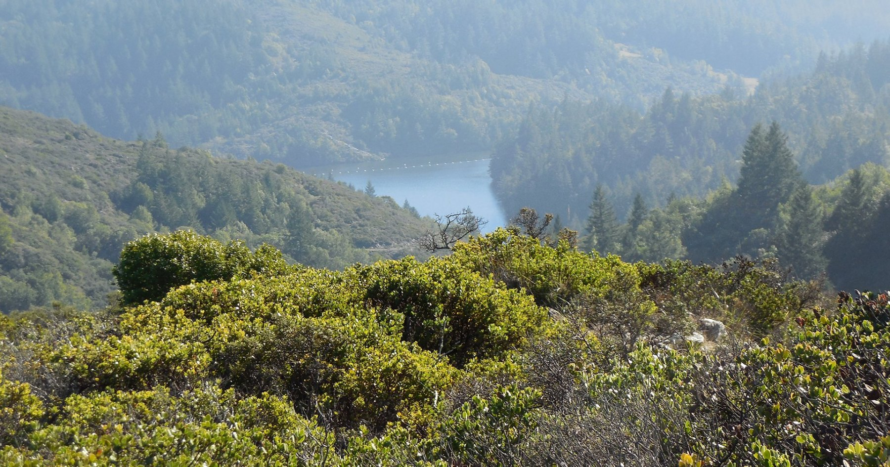 Hike to These 5 Vantages for New Views of the North Bay