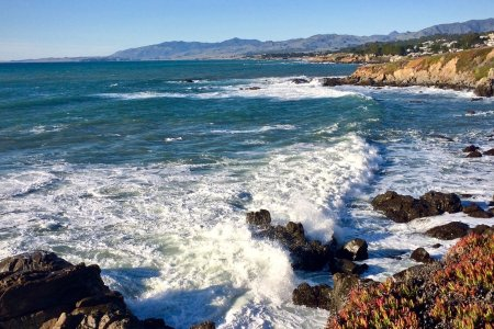 This Superbloom Getaway Involves Oysters, the Beach