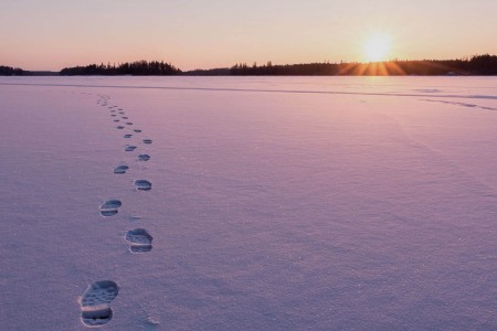 Gentleman's Handbook, Vol. 9.5: Survive a Fall Through Ice