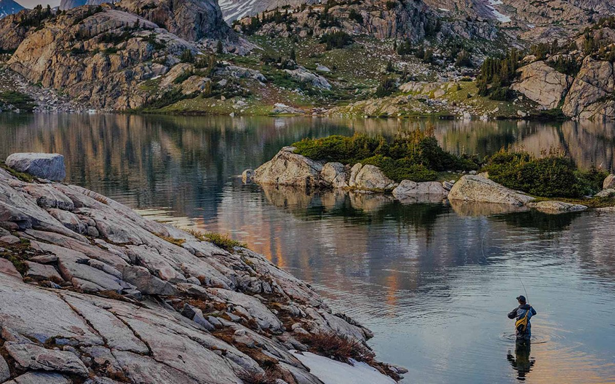 Patagonia Just Built a Craigslist for Environmental Activism, Basically