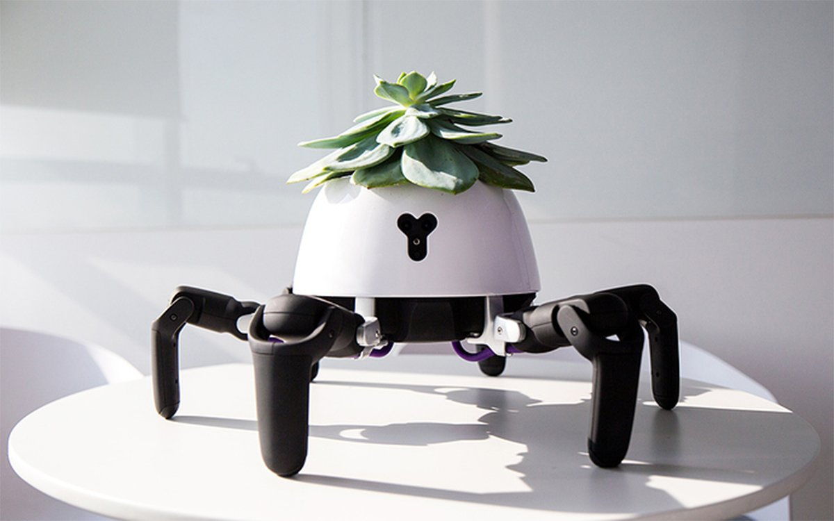 This Tiny Benevolent Robot Just Wants to Keep Your Plants Alive