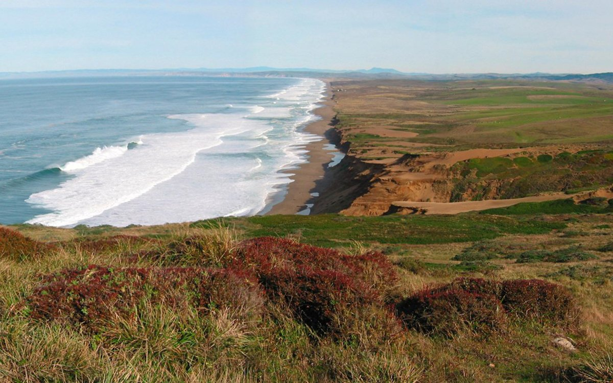 Plan Now for These 5 Superb Bay Area Wildflower Hikes