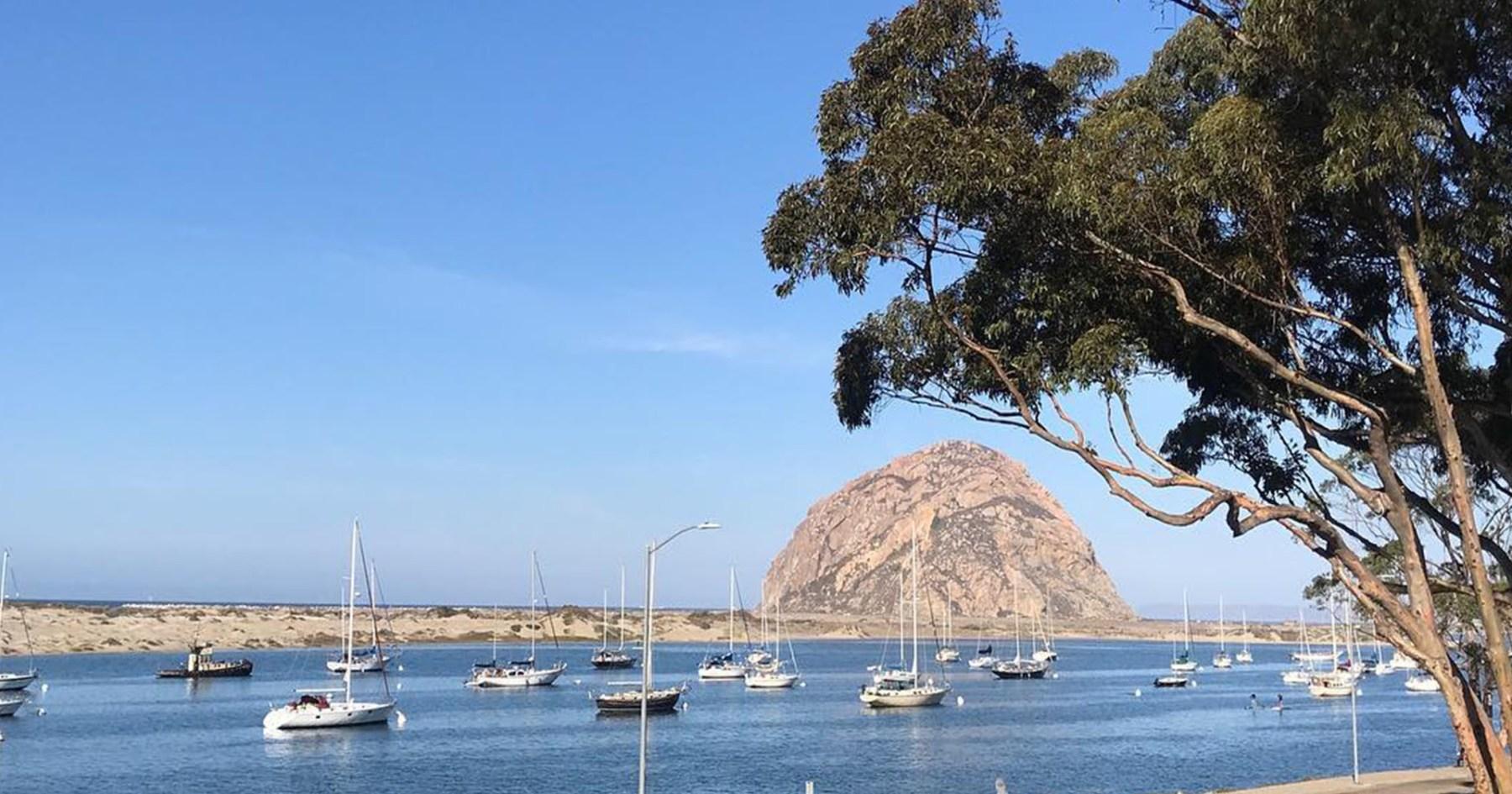 4-Hour Rule: Morro Bay