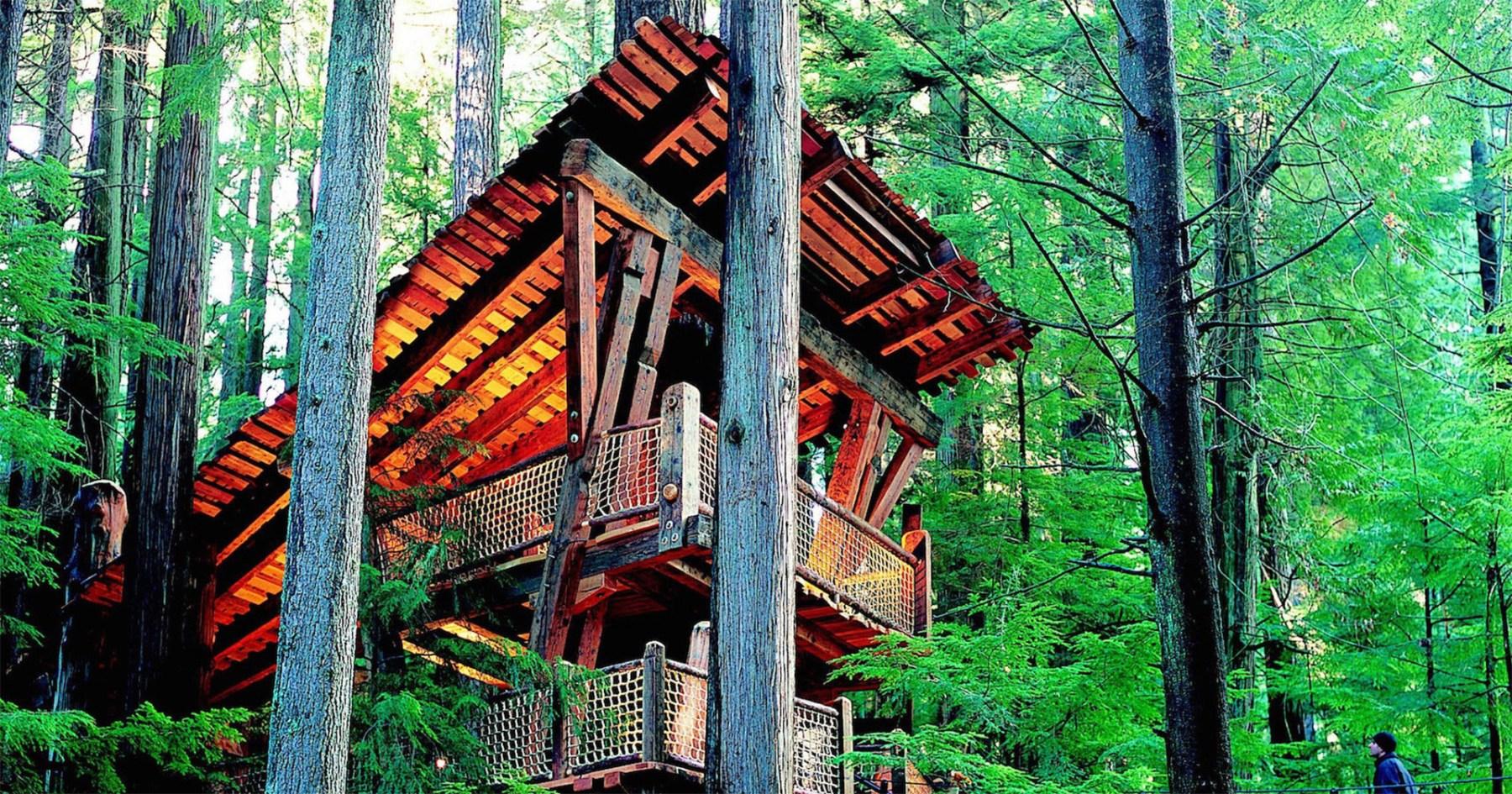 So You Wanna Sleep in a Five-Star Treehouse…