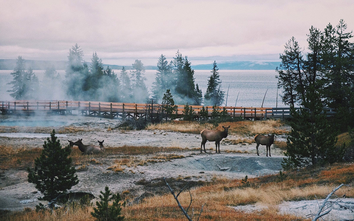 A 180-Mile Yellowstone Bike Trail Is in the Works