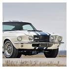 Mustang's 50th Anniversary